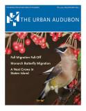Urban Audubon Cover - Fall 2015