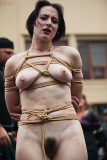 Bay Area Rope Exchange at Folsom '14
