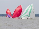 32.  At the Downbay races.