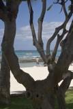 6.  On Waikiki Beach.