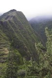 12.  In Maui's Iao Valley State Park.