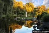 Japanese Garden of Buffalo