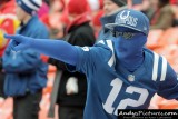 Indianapolis Colts fan