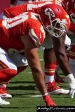 Kansas City Chiefs TE Anthony Fasano