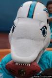 Miami Dolphins mascot TD