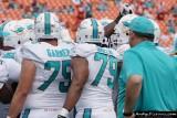 Miami Dolphins team huddle