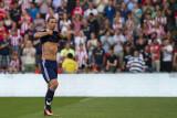 Zlatan Ibrahimović substitute
