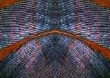 Feather-Konfabulation-3