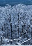Late-Season-Snow---5