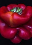 Red-Pepper---2