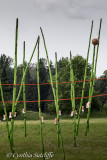 Asparagus Volleyball Tournament