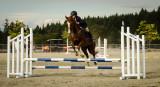 Valerie Payne03 Any Horse Event