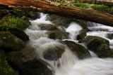 Cunningham Falls 6 wk1 IMG_2818.jpg