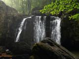 Kilgore Falls 3 wk1 IMG_6505.jpg