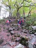 Burpham Dads - Training Walk at Brecon Waterfalls 20 Oct 2013  (21).jpg
