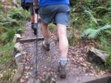Burpham Dads - Training Walk at Brecon Waterfalls 20 Oct 2013  (26).jpg