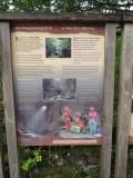 Burpham Dads - Training Walk at Brecon Waterfalls 20 Oct 2013  (3).jpg