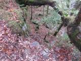 Burpham Dads - Training Walk at Brecon Waterfalls 20 Oct 2013  (85).jpg