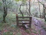 Burpham Dads - Training Walk at Brecon Waterfalls 20 Oct 2013  (87).jpg