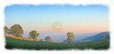 Morning Mist over Hawick.jpg