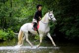 15 ILF Charity Ride 0225.jpg