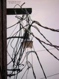 Electrician's Nightmare-Indianola