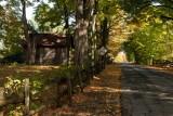 RM_Automne à Pigeon Hill