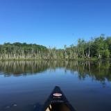 Ryan Redmond Paddle 2.JPG