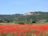Nice & Provence