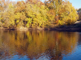 Reflections on the Monocacy river