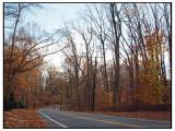 Downhill on Falls Road
