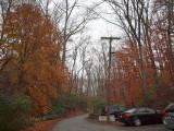 Nov 17th - Cloudy morning at Swains Lock