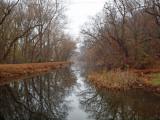 Canal at Swains Lock