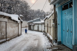 Walking up  alley - Dushanbe