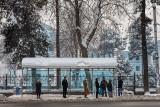 Waiting - Dushanbe