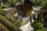 Ystwyth Gorge II