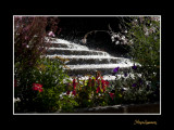 IMG_6932 fontaine SO.jpg