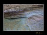nature eau IMG_8817.jpg