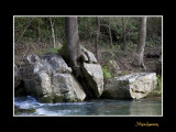 nature paysage IMG_8820.jpg