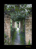 Nature jardin menton IMG_0095.jpg