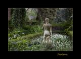 Nature jardin menton IMG_9996.jpg