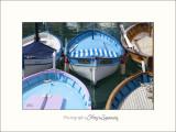Nice port marine IMG_0219.jpg