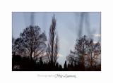 Fontmerle hiver 2014 12 IMG_4514.jpg