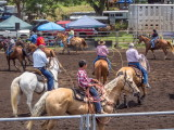 Rodeo in Honoka'a -- parade of riders before event