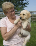 Donna Thate and River. 8 weeks old.