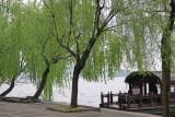 Hang Zhou Trip 2013
