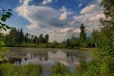 Pond Along Hiking TrailJune 23, 2013