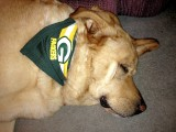 Green Bay fan Glinda