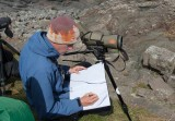 Seabird counting