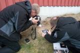 Fotografer fältjordstjärna